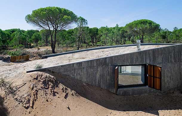 earth-home-design